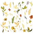 flowers leaves and plants vector image vector image
