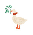funny goose with red collar on neck isolated on vector image