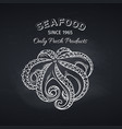 hand drawn octopus on chalkboard vector image vector image