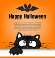 happy halloween cat is looking up at the bat vector image