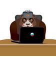 russian hacker bear and laptop ip technology