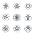 sacred geometric mandala design elements vector image