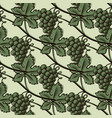 seamless pattern of green grape vector image vector image