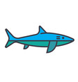 shark flat line concept vector image vector image