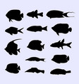 tropical fish collection silhouette vector image vector image