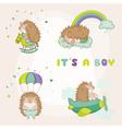 baby hedgehog set - for shower vector image vector image