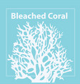 bleached coral trendy color 2020 vector image vector image