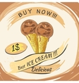 Chocolate Ice Cream with price Popsicle on a vector image vector image