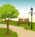 City park design vector image vector image