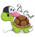cute turtle with a pink cap vector image vector image