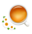 Herbal Tea With Camomile vector image