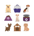 pets dogs canned food bowl cage and house icons vector image vector image