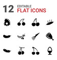 raw icons vector image vector image