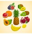 Tropical fruits collection Cartoon vector image