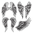 wings bird feather black white tattoo set 13 vector image vector image