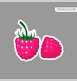 cartoon fresh raspberries isolated sticker vector image vector image