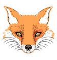 Cute fox face character tattoo design for pet