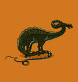 dinosaur apatosaurus silhouette on isolated vector image vector image