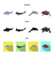 isolated object of sea and animal logo collection vector image vector image