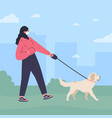 woman in white mask walking a dog vector image vector image