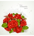 Bouquet of red roses with a field for your lyrics vector image vector image