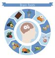Brain Foods infographics vector image