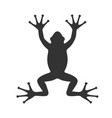 frog graphic vector image vector image