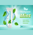 mint toothpaste dent protection oral care vector image vector image