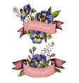 ribbon design of heartseases and herbs with thank vector image vector image