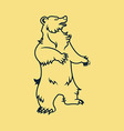 Standing Bear Line Art vector image vector image