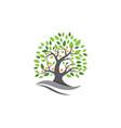 tree leaf ecology nature design vector image