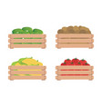 vegetables in wooden boxes isolated on a white vector image vector image