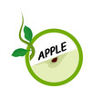 apple fruit icons flat style vector image vector image