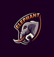 awesome sports elephant logo design vector image vector image