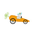 bunny driving carrot vector image vector image