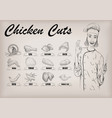 chicken hen cutting meat scheme parts brisket vector image