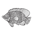 Fish zentangle style design for coloring boo