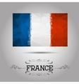 geometric polygonal France flag vector image vector image