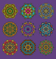mandala traditional flower pattern flower vector image