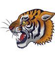 angry tiger head mascot vector image vector image