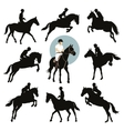 Equestrian sports vector image