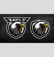 head eagle sport logo vector image vector image
