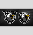 head of the eagle sport logo vector image