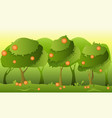 landscape orange garden vector image vector image