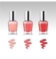 Nail Polish Packaging Bottle for Manicure vector image
