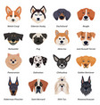 purebred dogs faces icon set vector image vector image