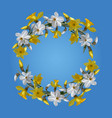 wreath of white and yellow daffodilswatercolor vector image vector image