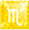 Zodiac Scorpio vector image vector image