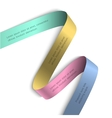 Elegant colorful ribbon banner vector image