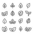 set line leaf icons vector image vector image